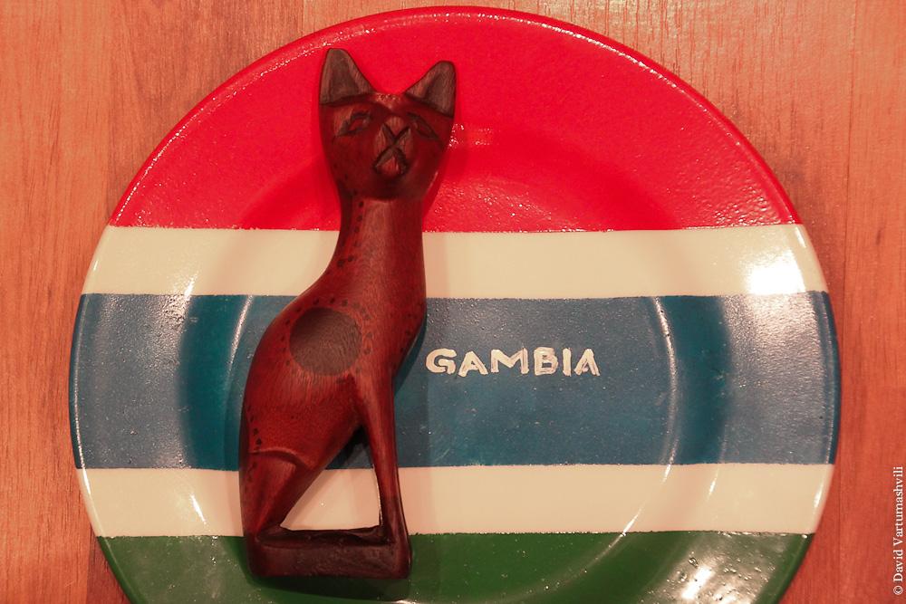 Гамбийский кот