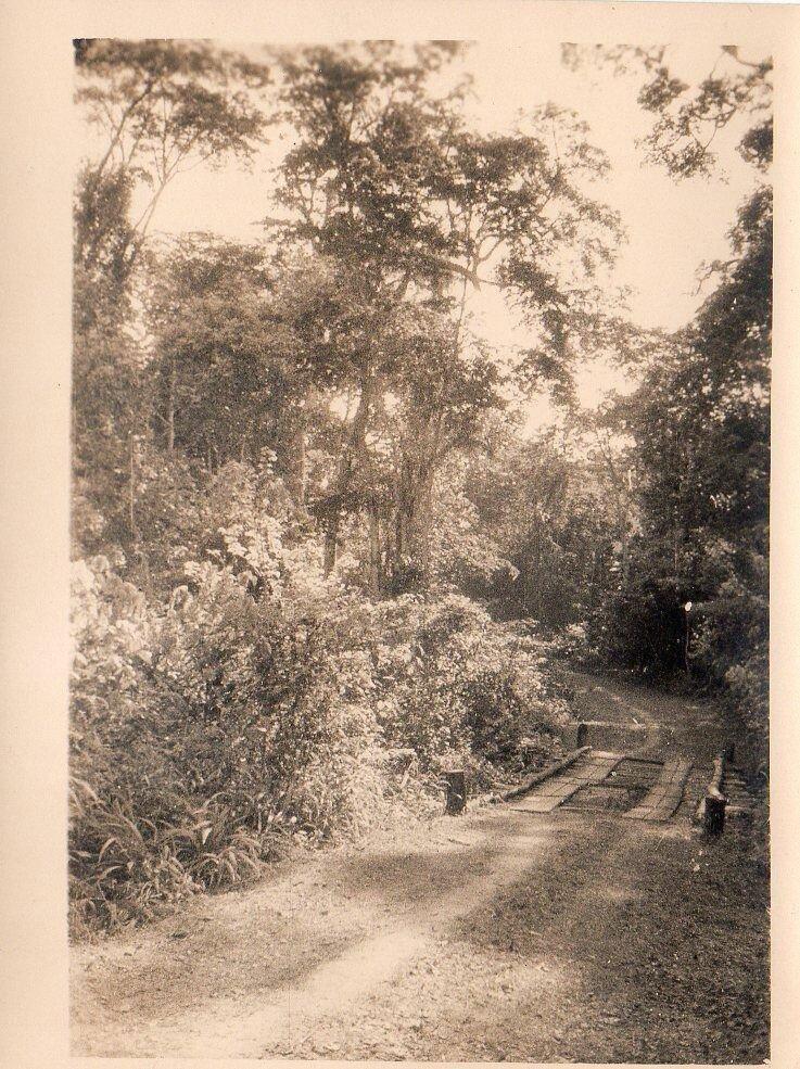 1930. Западная Африка, Деревянный мост