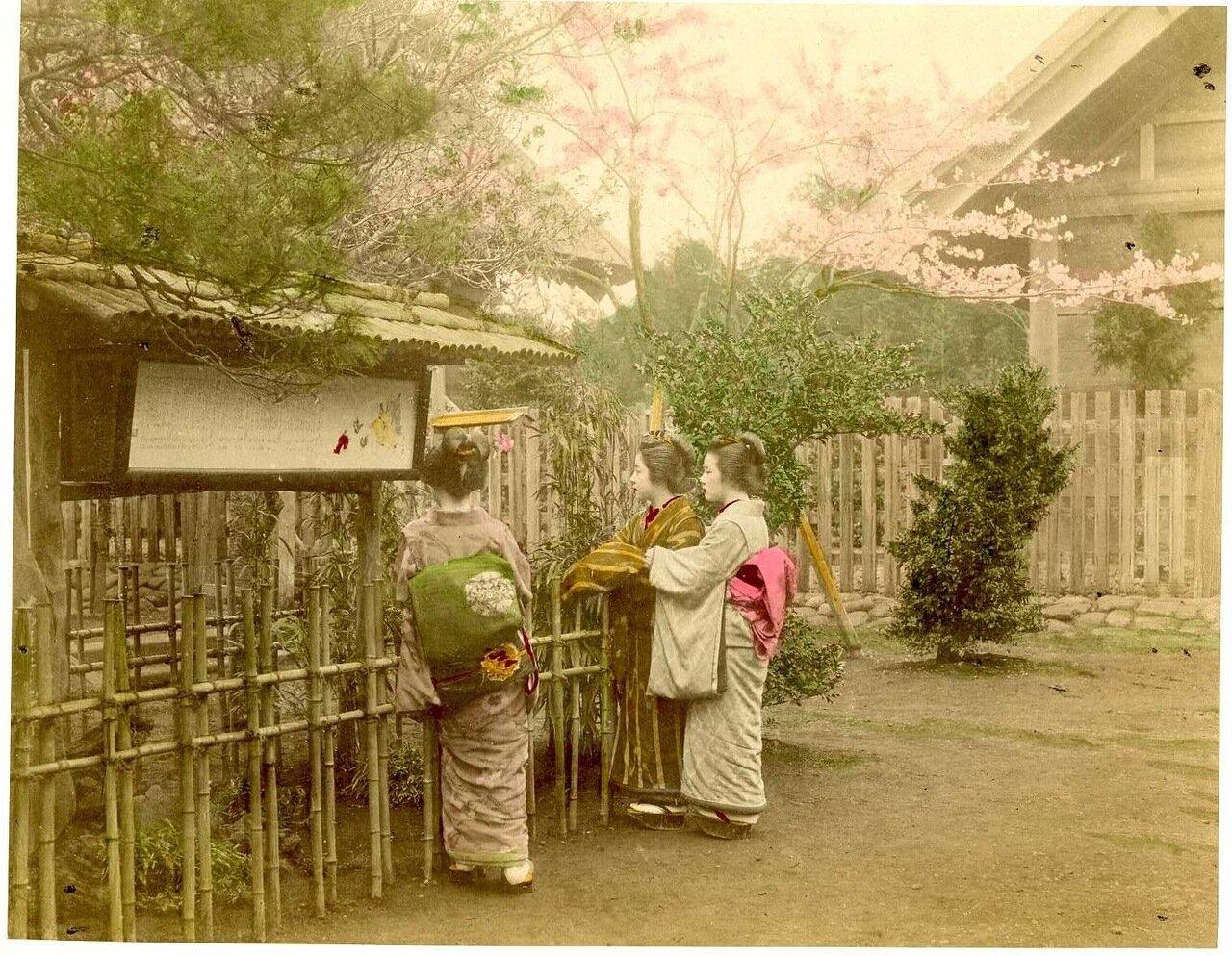 Гейши в саду. Камакура