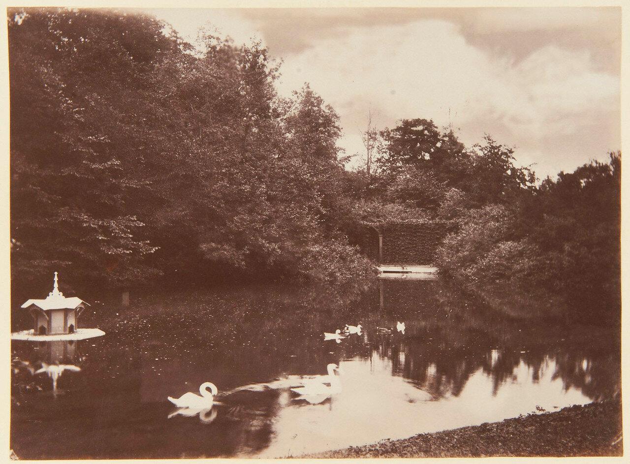 30. Озеро в парке Александрия