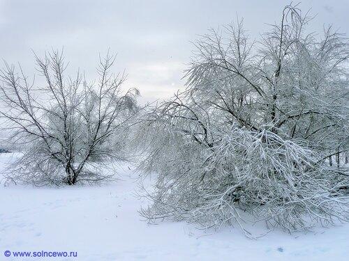 http://img-fotki.yandex.ru/get/4807/foto-re.94/0_4dfa9_adff9e20_L.jpg