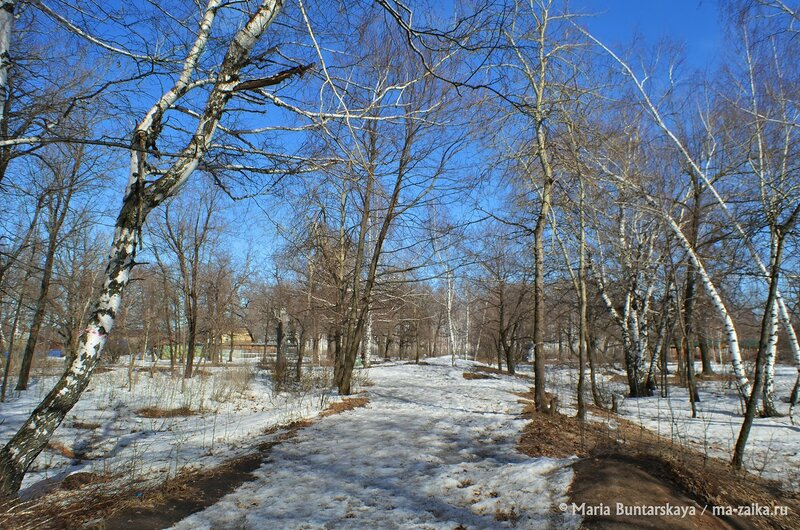 Шашлыки в беседках, Саратов, Кумысная поляна, 29 марта 2015 года