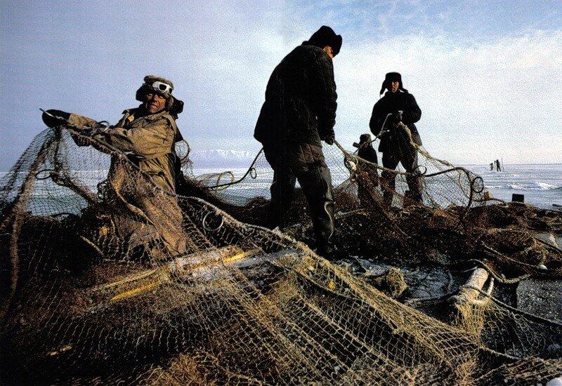 Рыбаки из рыболовецкого колхоза в Усть-Баргузине расставляют сети для подледного лова омуля