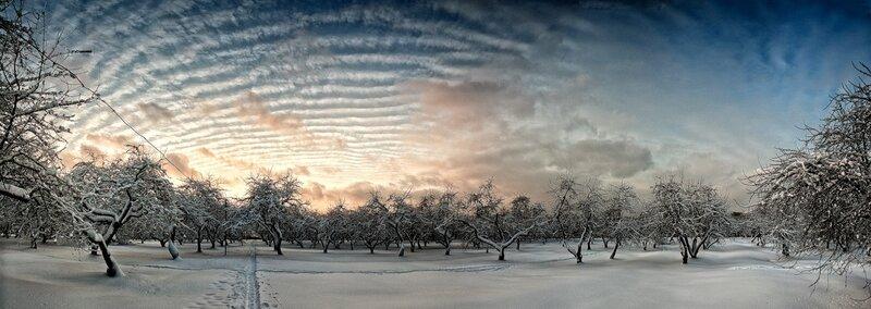 Зимнее Солнце Скачать Торрент - фото 4