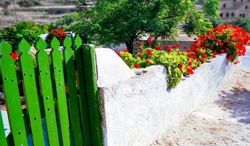 اسوارحدائق بالوان متعددة