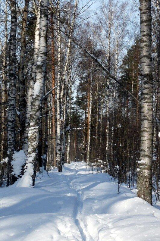 Зима на грани весны