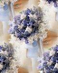58594753_1272914502_a100785_sum04_blue1_xl.jpg