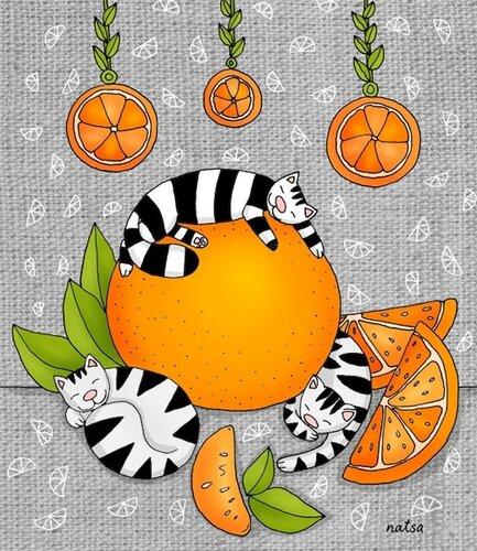 апельсиновые коты