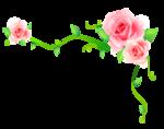 Цветы 105