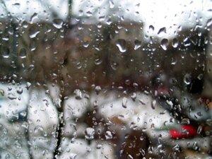 Погода в Приморье на выходных будет по-весеннему теплой