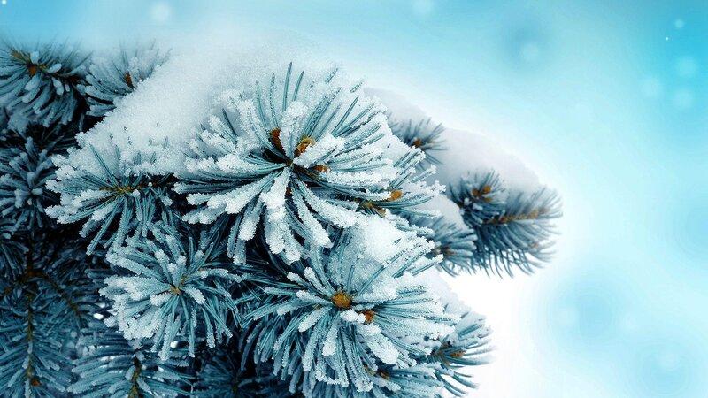 Снеговик  обои для рабочего стола картинки фото
