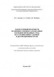 Книга Лабораторный практикум по физике горения газообразных и конденсированных сред, по газодинамике ударных и детонационных волн