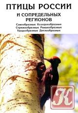 Книга Птицы России и сопредельных регионов (Том 6)