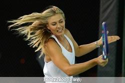 http://img-fotki.yandex.ru/get/4809/329905362.39/0_195737_28c4e2df_orig.jpg