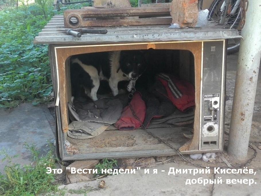 Террористы нанесли ракетно-артиллерийские удары по Донецку, Макеевке и Пантелейновке, - СНБО - Цензор.НЕТ 2483