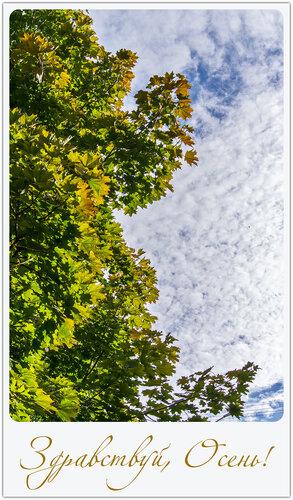 Вот и Осень!