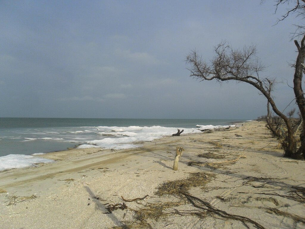На зимнем берегу... SAM_5649.JPG