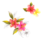 handpainted_flowers_layered_psd_8.png
