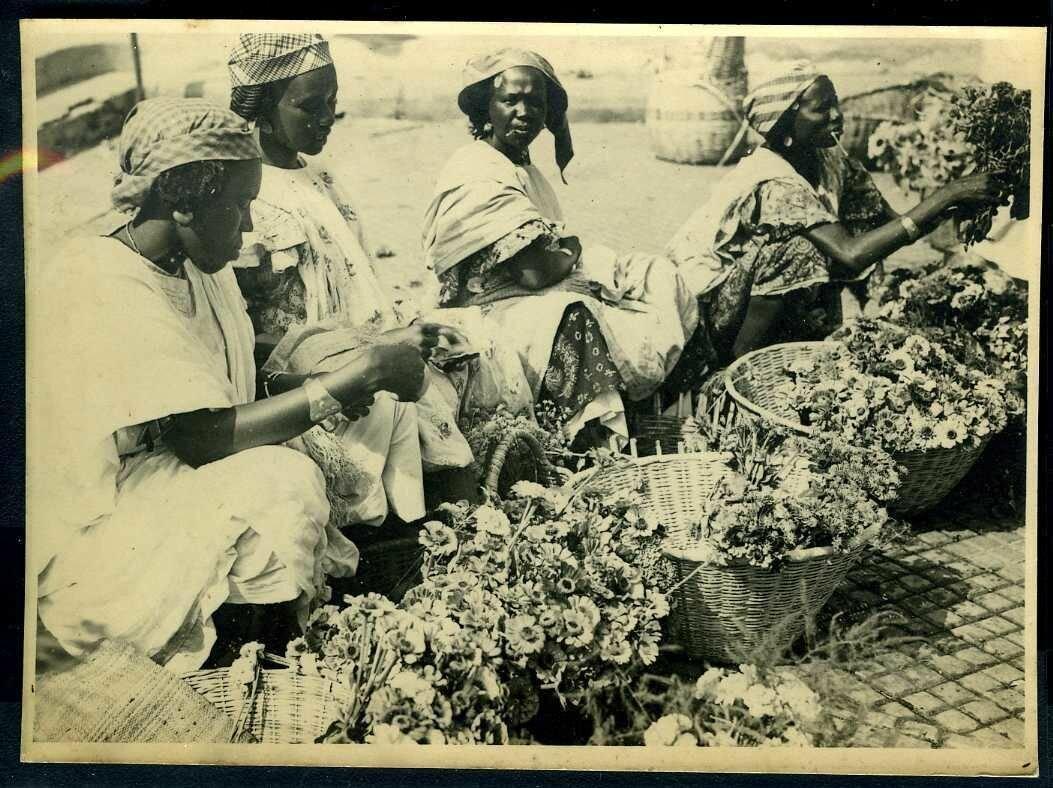 1950. Сенегал. Торговля цветами
