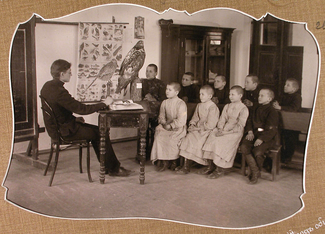 Ученики 3-го года обучения во время урока естествознания