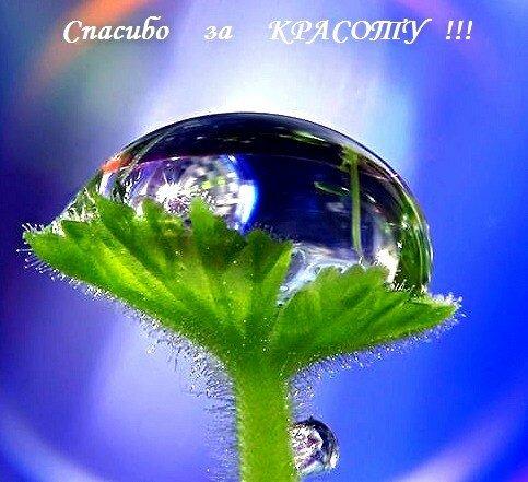 Спасибо за красоту )))