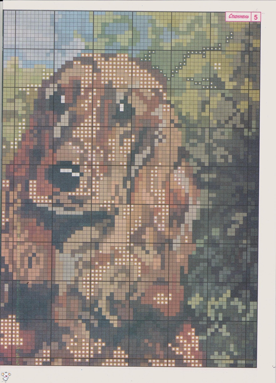 Схему вышивки крестом собаки