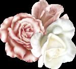 «cajoline_ FETE DES MERES» 0_5f04d_bf90914f_S