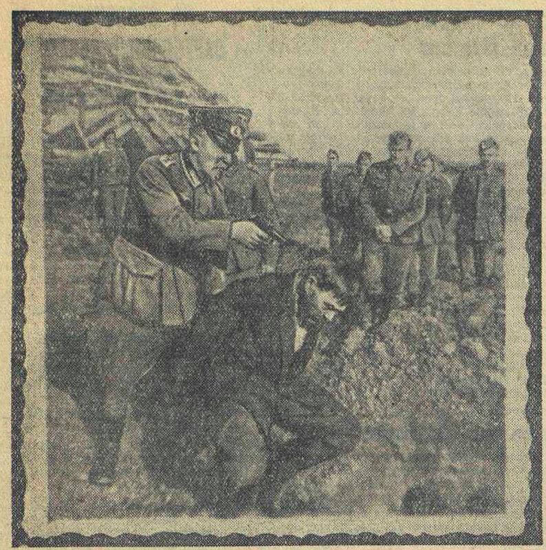 «Красная звезда», 8 сентября 1943 года, что творили гитлеровцы с русскими прежде чем расстрелять, зверства фашистов, зверства фашистов над женщинами, издевательства фашистов, преступления фашистов