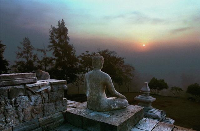 Your moment of Zen, Ed Freedman.jpg