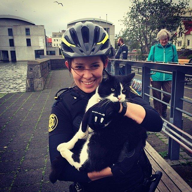 Официальный инстаграм исландской полиции. Это нужно увидеть!