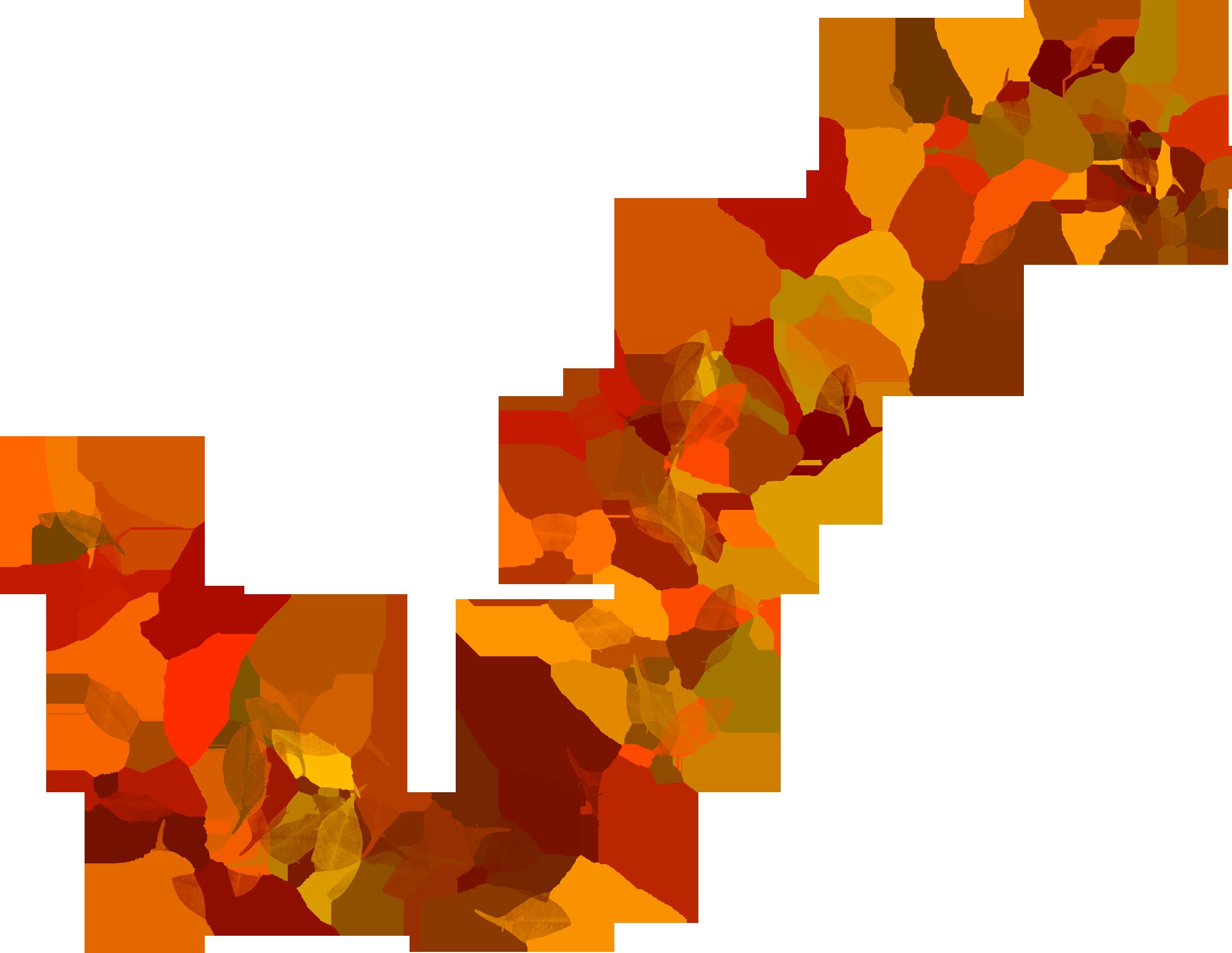 изображение листьев осенних