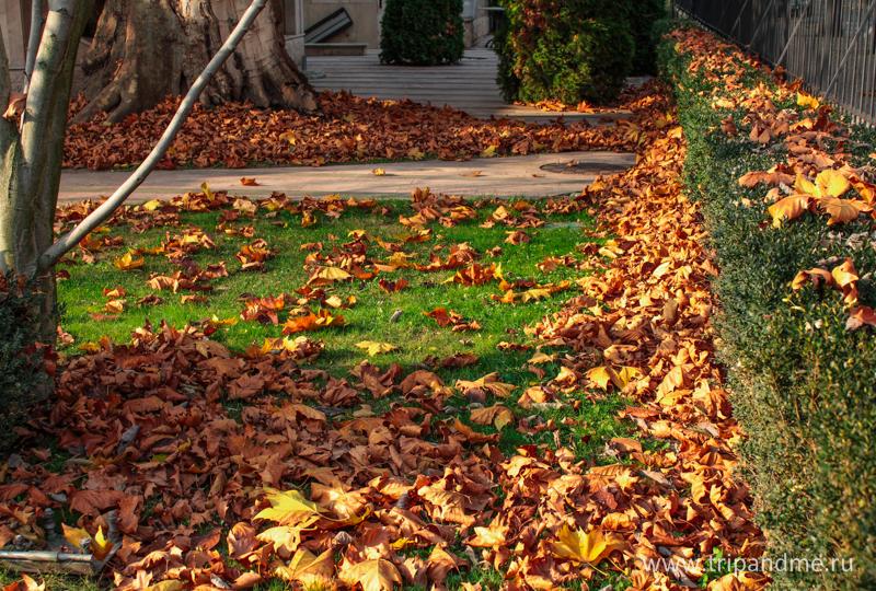 Осенний Будапешт 15.jpg
