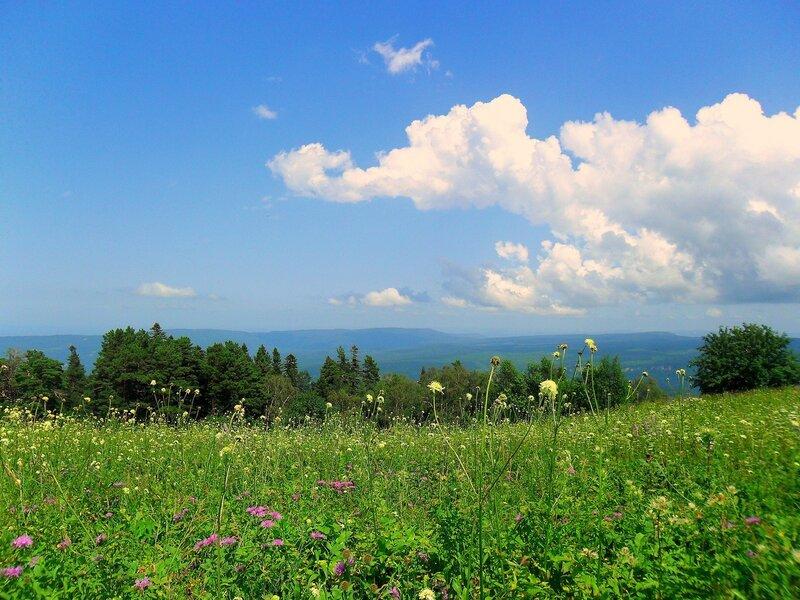 Мезмай-Оштен, Кавказ, туризм, лето 2010, фото, летние картинки, Краснодарский край, Лагонаки