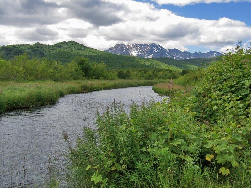 В Налычевской долине, Камчатка