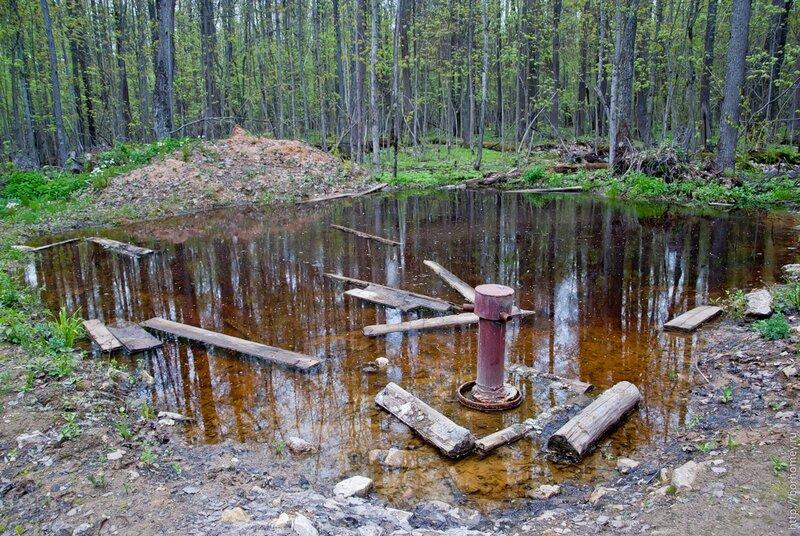 труба в саровском лесу