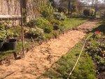 Итак, весной начали воплощать в сад проект.  3. Выкапываем корыто дорожки.  2. Разбиваем трассу новой дорожки.