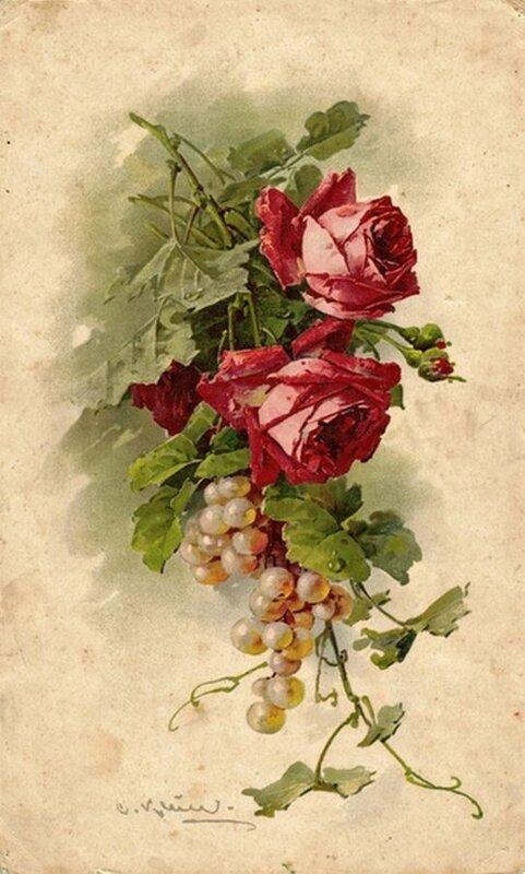 К. Кляйн. Розы и виноград.