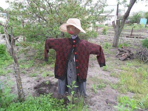 27 май 2010 огородное чучело - забавный Шаблоны на Mega-PICS