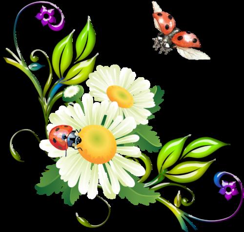 http://img-fotki.yandex.ru/get/4810/persiyanovanina.d/0_5bb70_2555512c_L