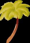 пальмы море (10).png