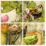 «Im like a bird» 0_6a6d5_c79eb9f3_S