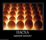 901633_pasha.jpg