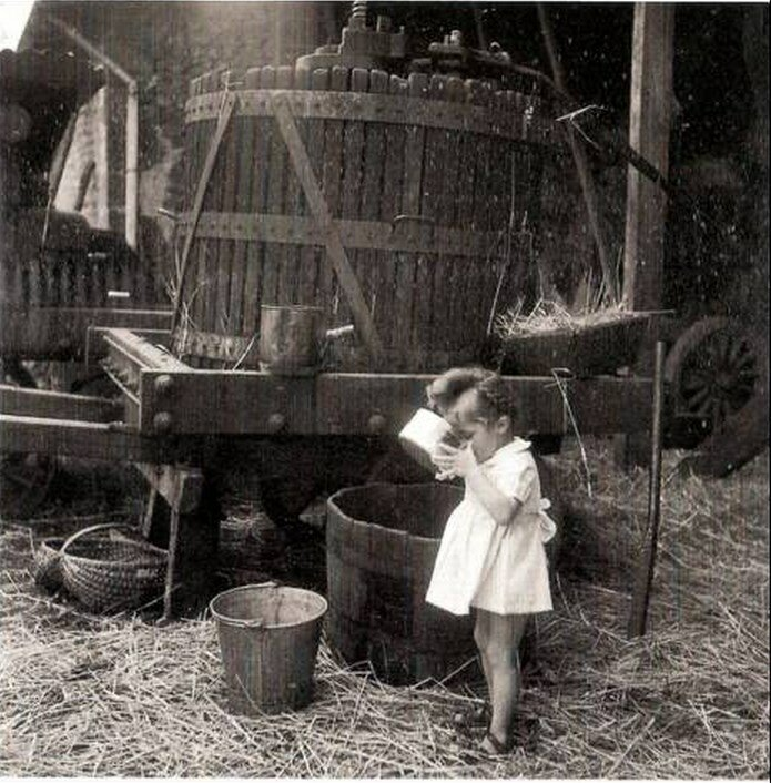 1945. Яблочный сок Санкт Совант