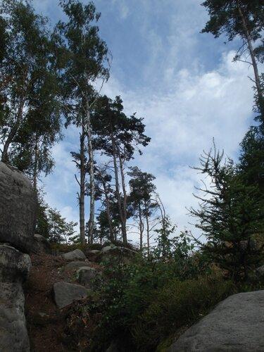 Prachovske skaly
