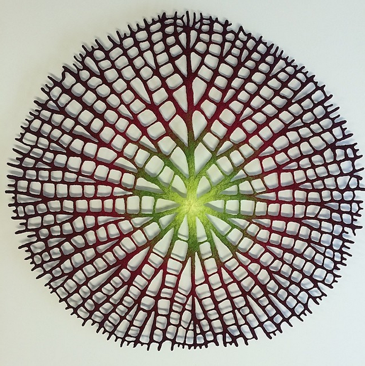 Nature embroidered, Meredith Woolnough8_1280.png