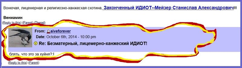 Косырева, Жалобы, Мейзер