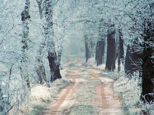 100 самых красивых зимних фотографии: пейзажи, звери и вообще 0 10f5a9 f83d3a59 orig