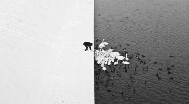 100 самых красивых зимних фотографии: пейзажи, звери и вообще 0 10f5ca c9821aba orig