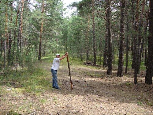 20110724 - Минусинский бор01