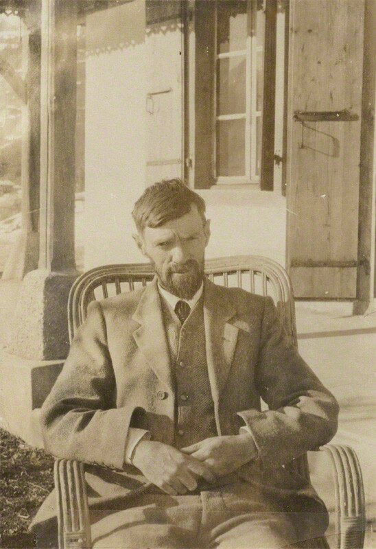 essays on dh lawrence